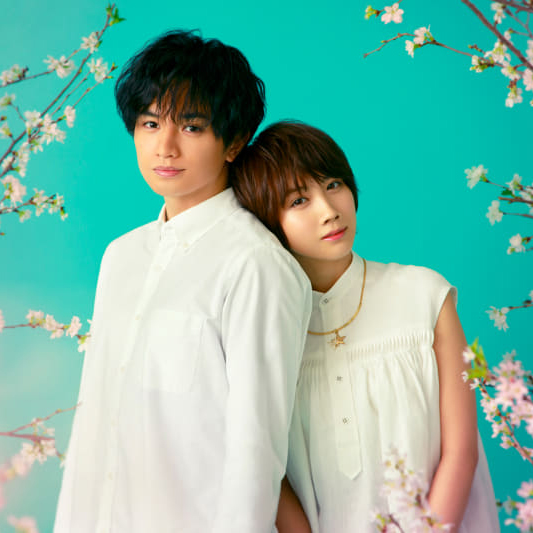 2022年Netflixで世界同時配信される映画「桜のような僕の恋人」の情報が解禁!!